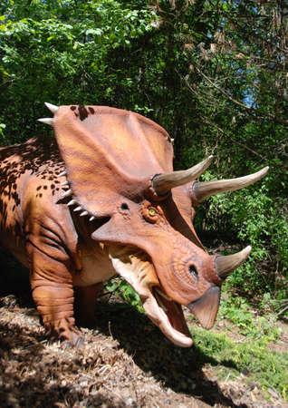 bony: Triceratops Head