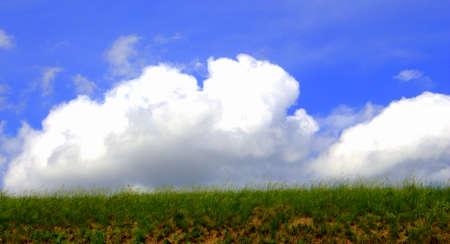 screen savers: Cloudy Field