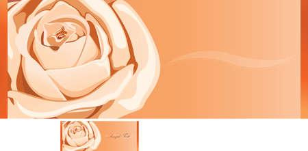 rose Stock Vector - 3110470