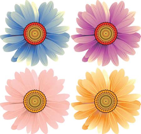 daisy flowers Stock Vector - 3128914