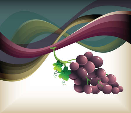 purple grapes: fruits Illustration