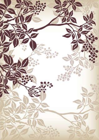 ornaments vector: albero ramo modello