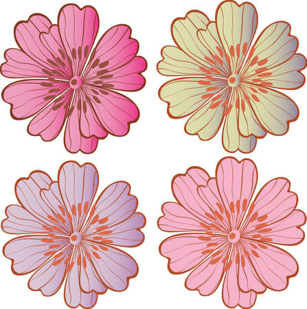 vector flowers: daisy 1