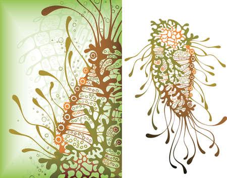 invertebrate: Sea Life 6 Illustration