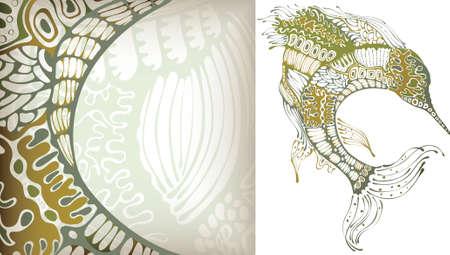 vertebrates: Fish Illustration