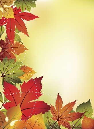 season: Fall Leaf Background