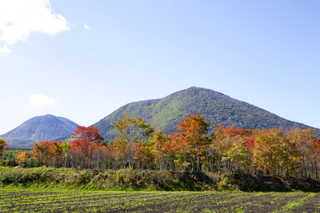 Tsumagoi landscape of the early autumn in Japan Stok Fotoğraf