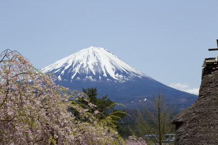 Mt. Fuji and thatched roof