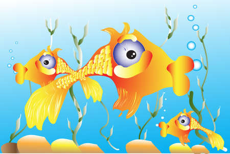 fishy: The illustration - goldfish