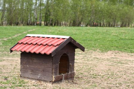 front or back yard: Nice doghouse without a dog in country farm at summer time