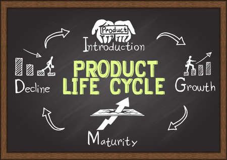 product development: Hand drawn product life cycle on chalkboard. Info graphics.