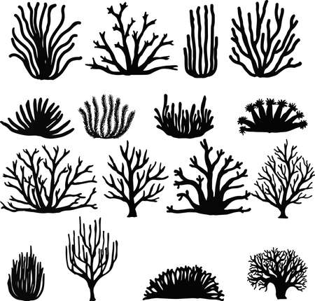 and marine life: Hand drawn corals isolated on white. Silhouette icons.