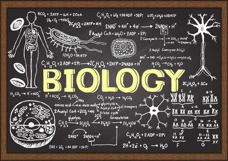 Hand drawn biology on chalkboard. Illustration