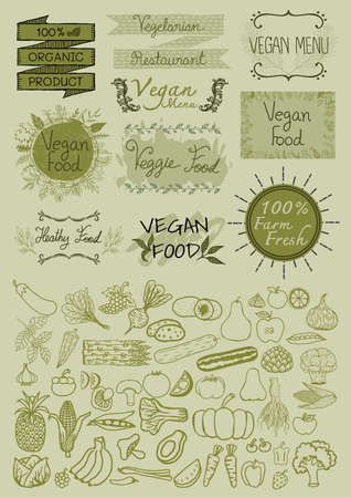 organic food: Hand drawn typographic elements Vegan menu, organic food, vegetarian restaurant and big set of hand drawn vegetable elements.