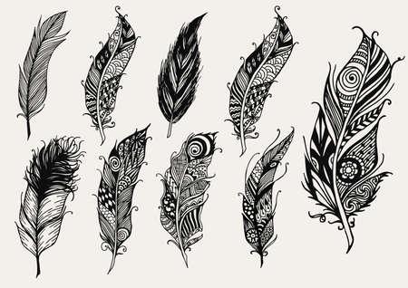 Conjunto de dibujado a mano de plumas decorativas rústicos