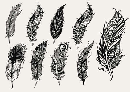 a feather: Set of hand drawn rustic decorative feathers Illustration