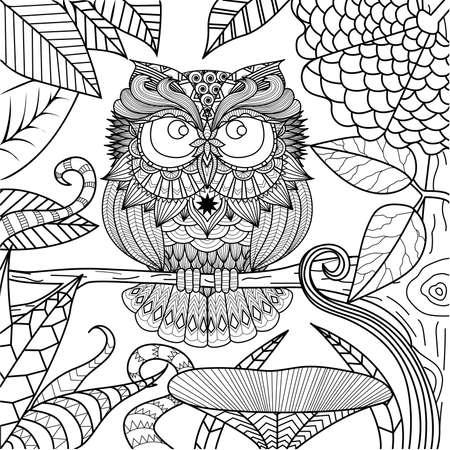 sowa: Sowa rysunek dla kolorowanka. Ilustracja