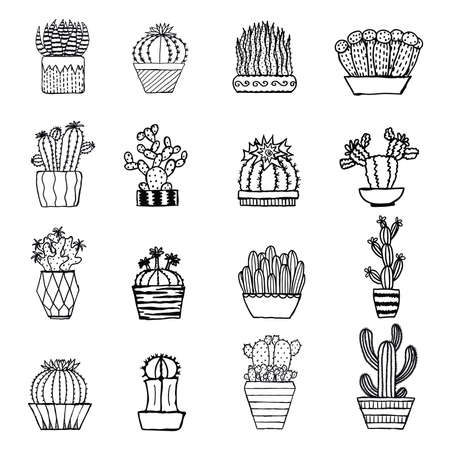 terrarium: Hand drawn cactus isolated on white background Illustration
