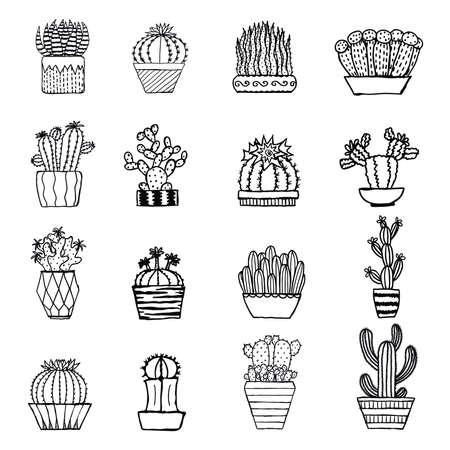 Hand drawn cactus isolated on white background Illustration