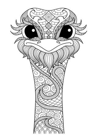 avestruz: Dibujado a mano de estilo avestruz para colorear página, camiseta efecto de diseño, tatuaje y así sucesivamente.