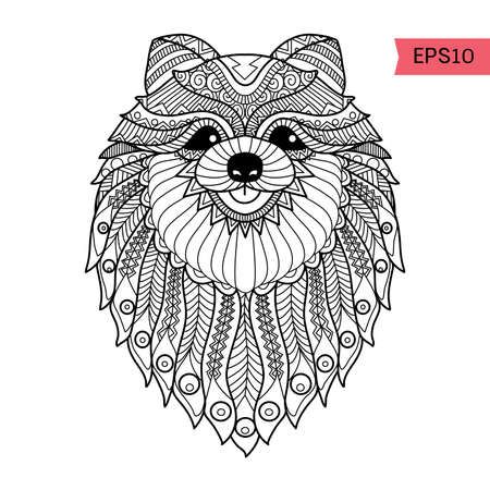 Hand drawn   Pom dog background for coloring page