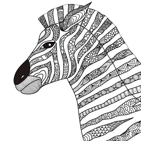 Hand drawn zebra  style for coloring book
