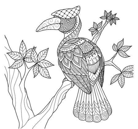 Hornbill zentangle design for coloring book for adult
