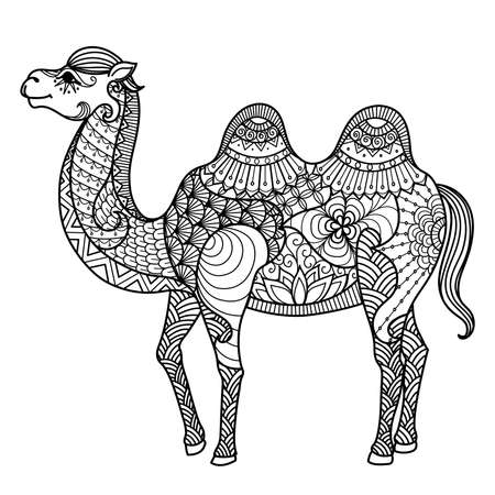 camel: Camel for coloring book for adult and other decorations