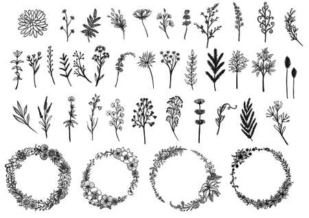 Hand drawn wreaths and wild flowers collection