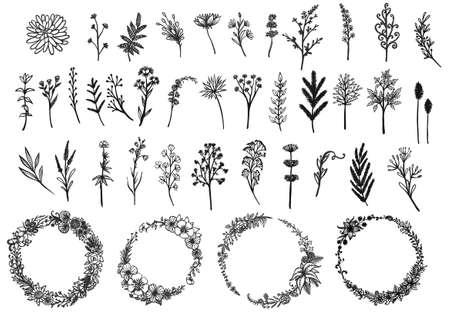 Hand gezeichnete Kränze und Wildblumensammlung