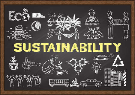 Hand drawn illustration about susstainability on chalkboard.