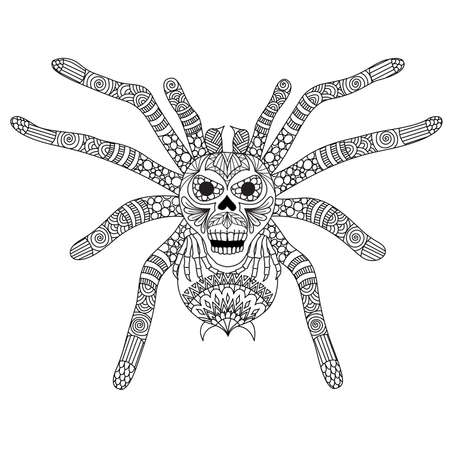 Coloring Book page for adult and kid. Colouring picture of zentangle stylized spooky skull face on spiderman back. Hand drawing illustration. Design element for holiday season event.