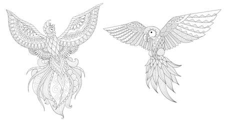 Set of Phoenix and parrot bird for design element and coloring page for adult.Vector illustration