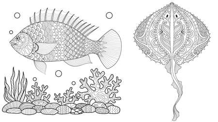 Coloring page for adult colouring book. Underwater world with stingray shoal, tropical fishes and ocean plants. Antistress freehand sketch drawing with doodle