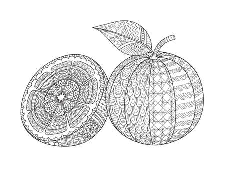 Line art design of sliced of orange and whole orange for printing on product, engraving, adult coloring book, coloring page and so on. Vector illustration 向量圖像