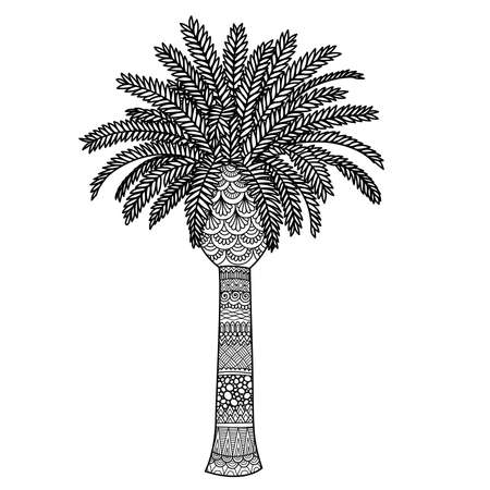 Line art palm tree for design element