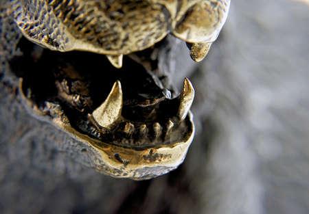 pet photography: Closeup view of  bronze bear teeth.  Stock Photo