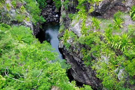 Mountain Stream in Mauritius Island