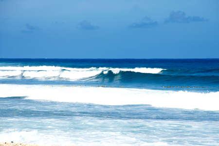 Beautiful coast of beach at day. Nature composition. Фото со стока