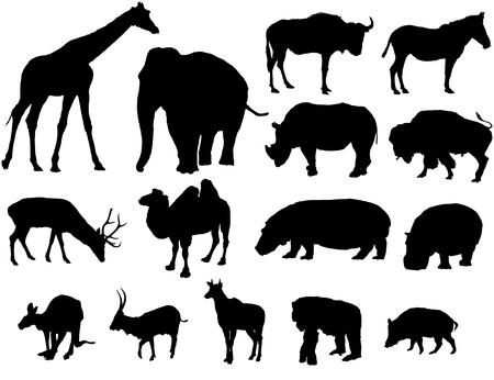 bison: large herbivores Illustration