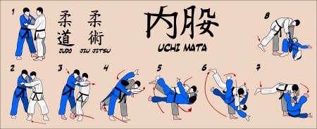 jujitsu: judo Inner thigh reaping throw