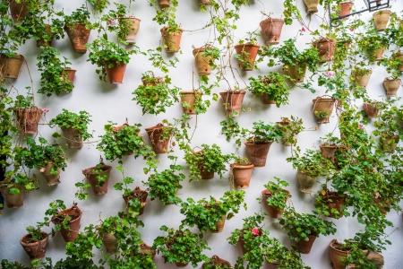 Wall pots in Cordoba Stock Photo