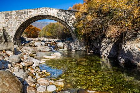 Under a Roman bridge from Jarandilla with forest background