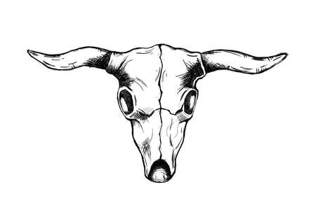 head bull skull for wild west icon sketch hand drawn illustration isolated with white background