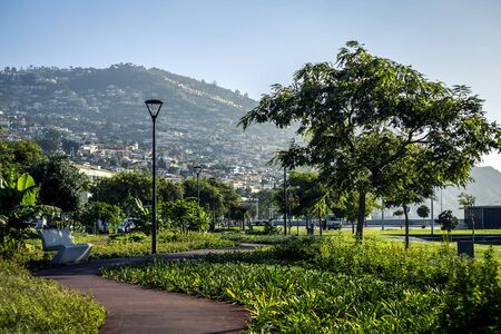 View of Funchal city from the park, Madeira island, Portugal. Banco de Imagens