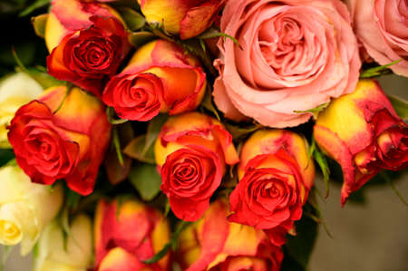 very pretty colorful rose bouquet close up