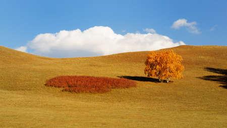grasslands: Inner Mongolia Chinese Ulan Buh grasslands Stock Photo