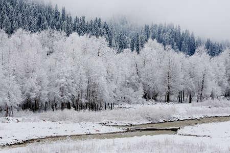 cloud capped: Snow scenery at Kurdish Ning, Xinjiang