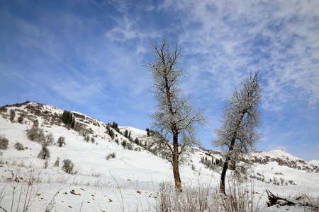 cloud capped: Snow scenery of Kurdish Ning, Xinjiang