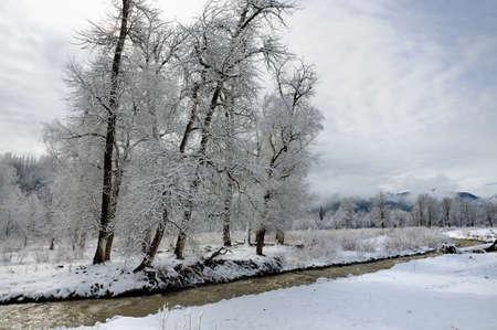 cloud capped: Snow scenery in Xinjiang